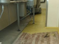 aanbrengen ucrete ud200 industriele vloer